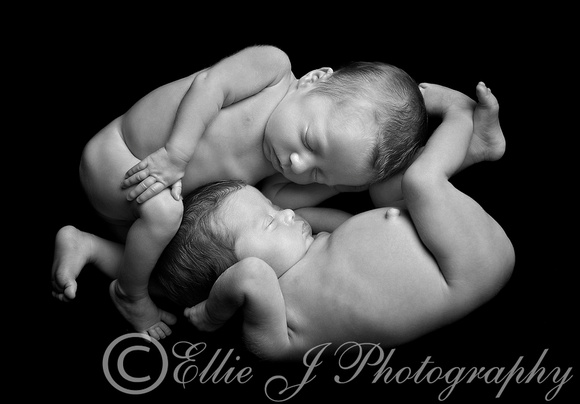 Ellie J Newborn And Family Photography Coventry
